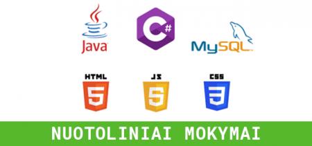 Programavimo pagrindai per 6 savaites | Vilnius Coding School